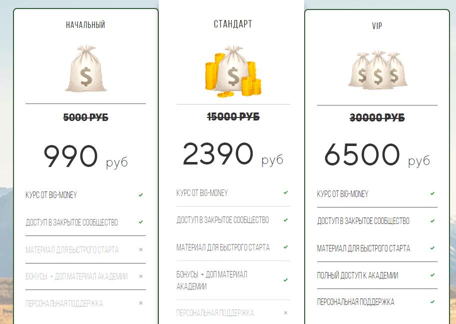 big money online отзывы